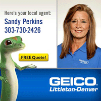 Geico – Sandy Perkins